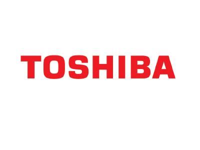 Opciones Toshiba